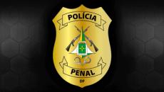 Edital Verticalizado - Polícia Penal do Distrito Federal - Agente