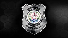 Edital Verticalizado - Agente Penitenciário PPMG