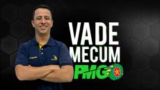 VADE MECUM PDF - PMGO