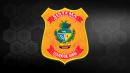 Reta Final - Agente Prisional de Goiás - ONLINE